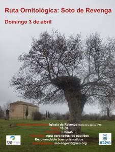 cartelSEO