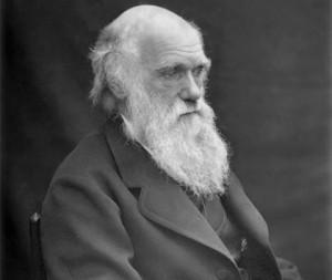 darwin_1878