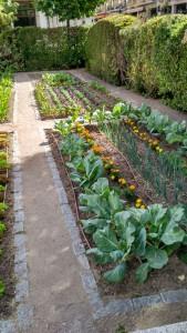 jardinhorticola4