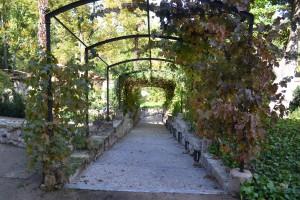 jardinCasadelaMoneda